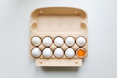 hvilke høns lægger de største æg