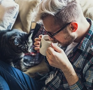 Katte har god indflydelse på dit helbred