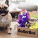 Bullerbox test