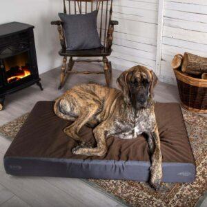 Scruffs ArmourDillo Anti-tygge senge - 2 størrelser