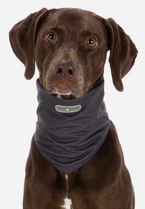 Halstørklæde til hunde der fjerner flåter